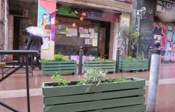 561x360_marseille-les-habitants-de-la-rue-d-aubagne-ont-mis-des-jardinieres-dans-la-rue